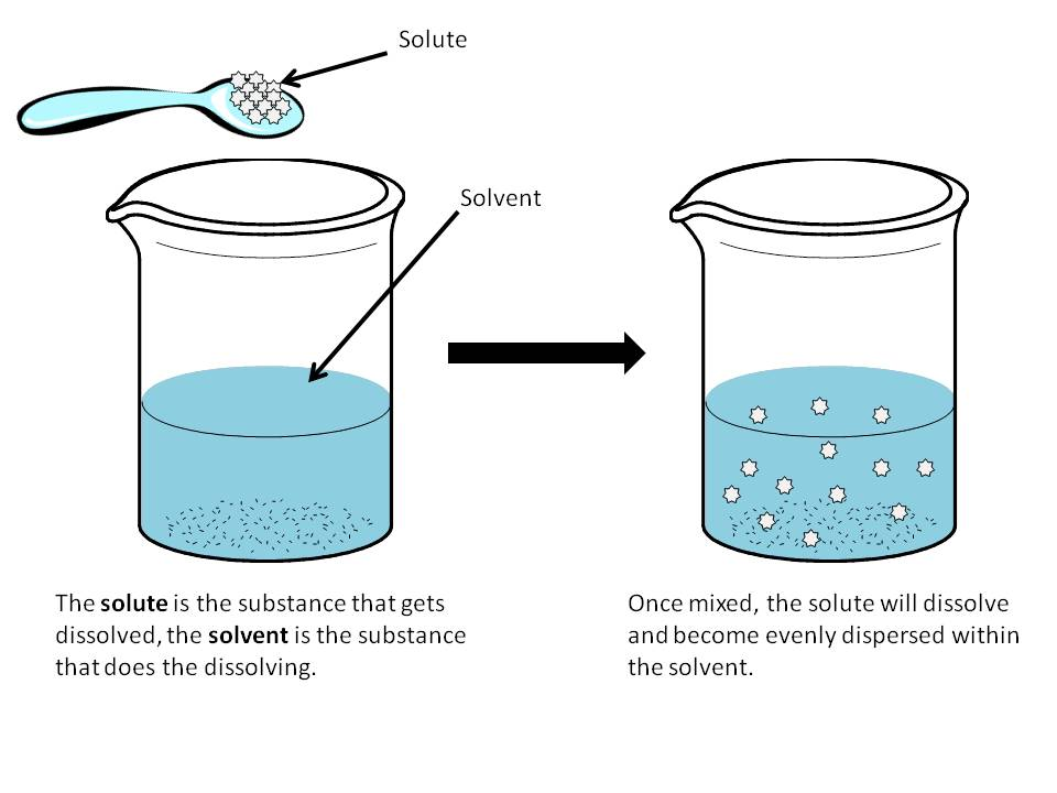Osmosis  The Ins And Outs Of Biological Membranes